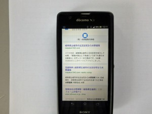 P9060012